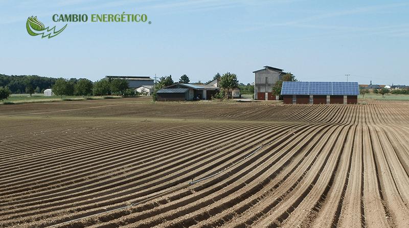 AUTOCONSUMO FOTOVOLTAICO, EL FUTURO DEL SECTOR AGROALIMENTARIO