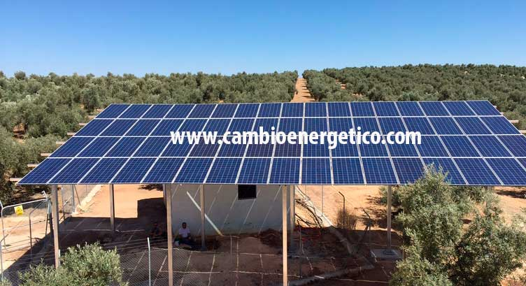 Bombeo solar en olivar de Jaen