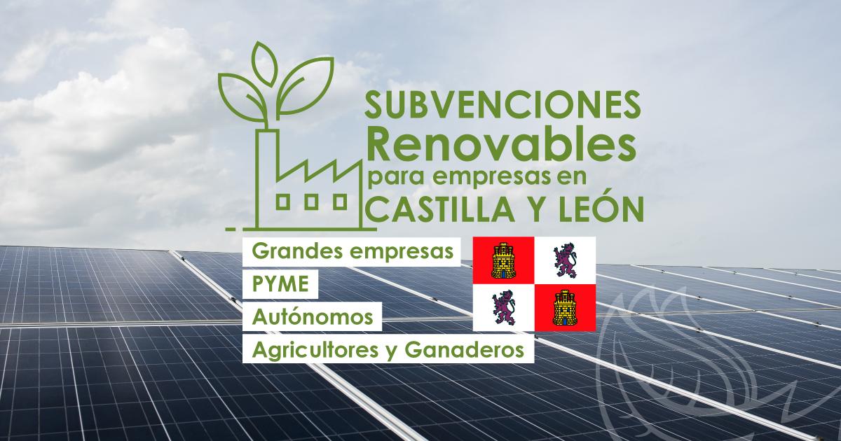SUBVENCIONES DEL 40% A RENOVABLES PARA EMPRESAS EN CASTILLA Y LEÓN