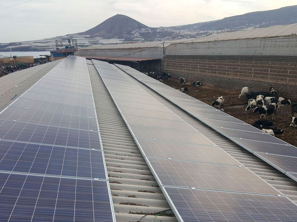 Instalación solar en explotación ganadera